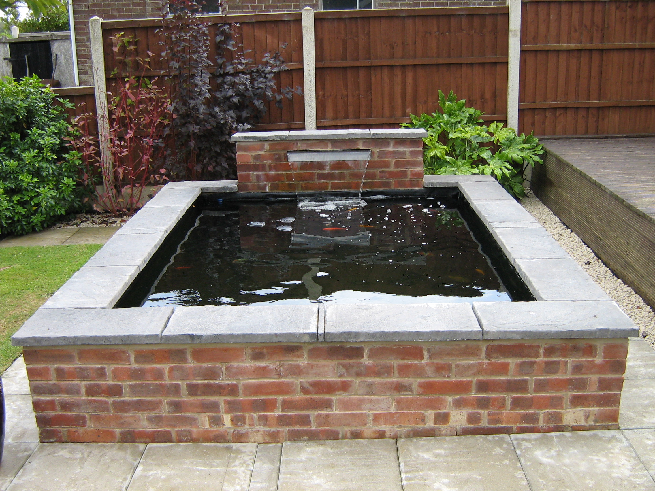 Case studies aquatic care all aspects of aquarium and for Concrete garden pond